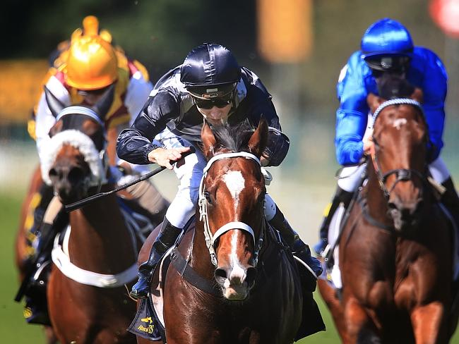 The promising Counterattack will be given his chance in the juvenile features. Picture: M