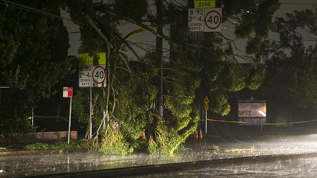 A broken tree branch rests on power wires as a result of bad weather at the intersection