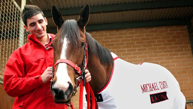 Trainer Michael Costa will be chasing a win with Nip Of Time at Wyong on Thursday.
