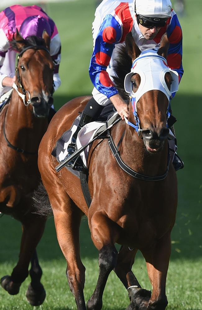 Queensland bound? Lumosty thumps her rivals down the Flemington straight. Picture: Getty