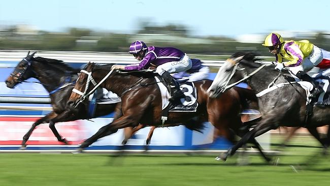 Sense And Reason produced impressive sectionals first-up at Rosehill.