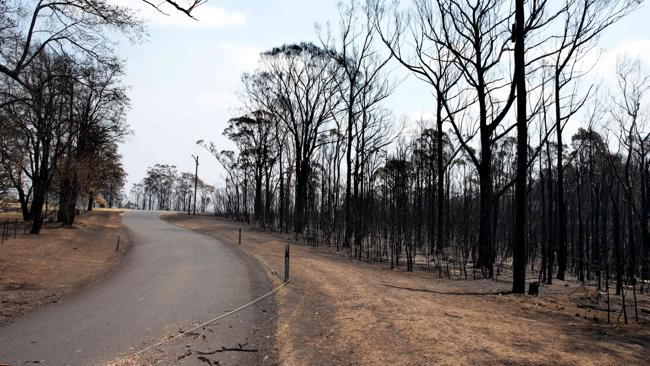 Bushfire ravaged Singles Ridge Road, Yellow Rock. Picture: Cameron Richardson