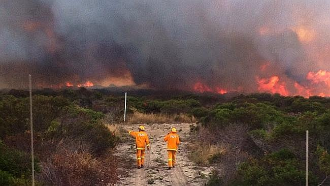 Firefighters near the Point Boston blaze on the Eyre Peninsula.