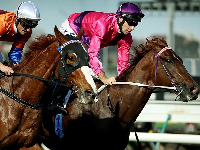 Looks Like The Cat (left), with Damian Browne aboard, made ground late on Rich Enuff. Pic