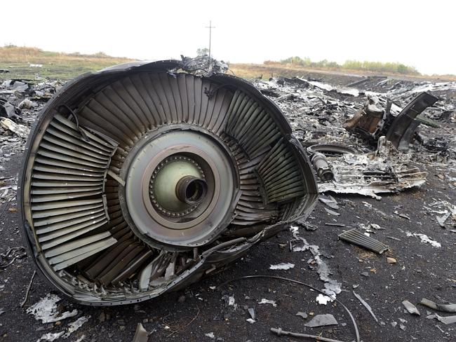 The Malaysian passenger jet, which was shot down over rebel-held east Ukraine with the lo