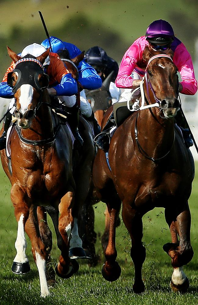 Looks Like The Cat (left) fights out the finish of the Danehill Stakes with Rich Enuff. P