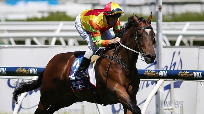 Lankan Rupee is paying $6 for the T.J. Smith Stakes. Picture: George Salpigtidis