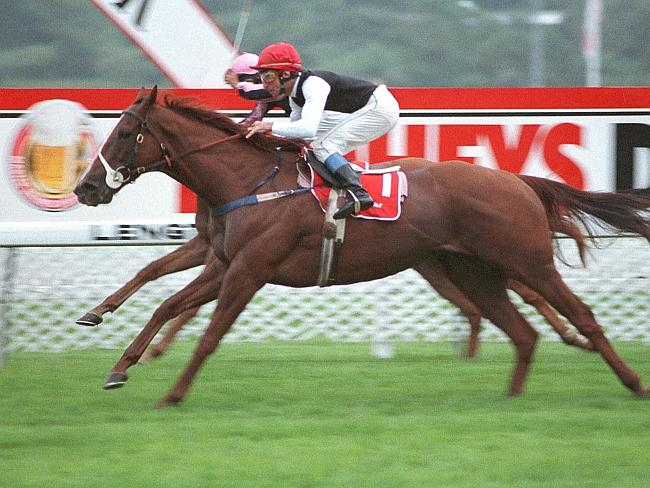 Another super popular miler, Super Impose, won the Doncaster on two occasions.