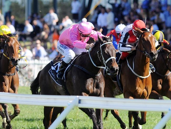 Champagne Cath is probably is the best horse in the race but there are genuine concerns a