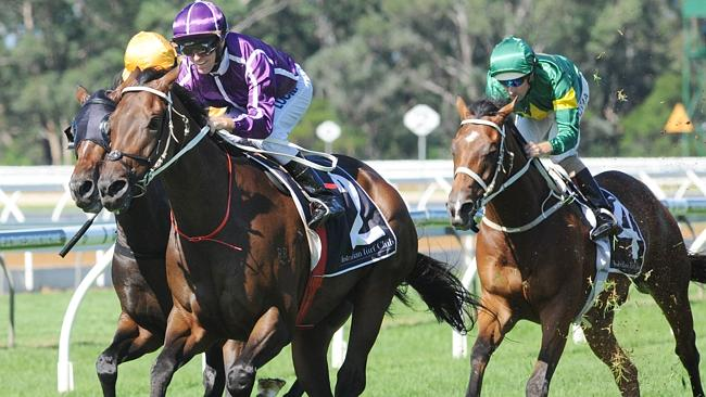 Long time between drinks: Boban's last win came in the Group 1 Chipping Norton Stakes in
