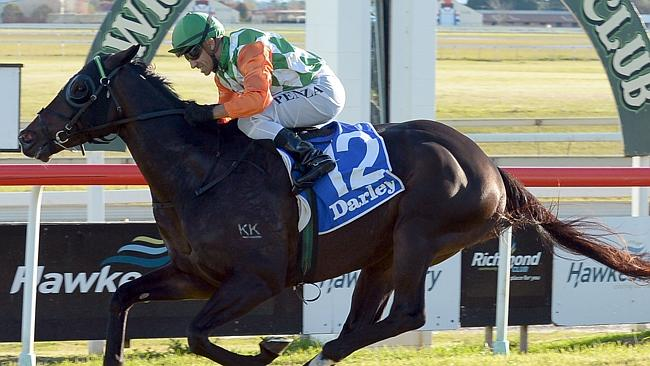 Sons Of John wins the Hawkesbury Gold Cup for in-form jockey Jeff Penza on Sunday. Pictur