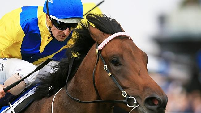 Trainer Peter Snowden is aiming for a fourth Golden Rose with Pride of Dubai.