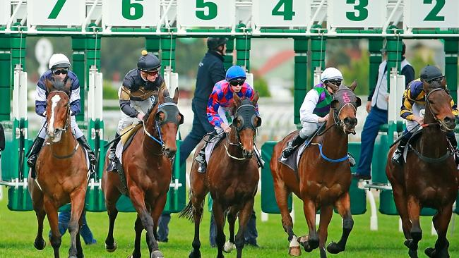 The latest cobalt developments are the last thing Racing Queensland needs after all RQ bo