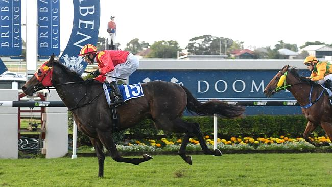 Golden Falls just needs some luck in running to figure prominently at Doomben. Picture: T
