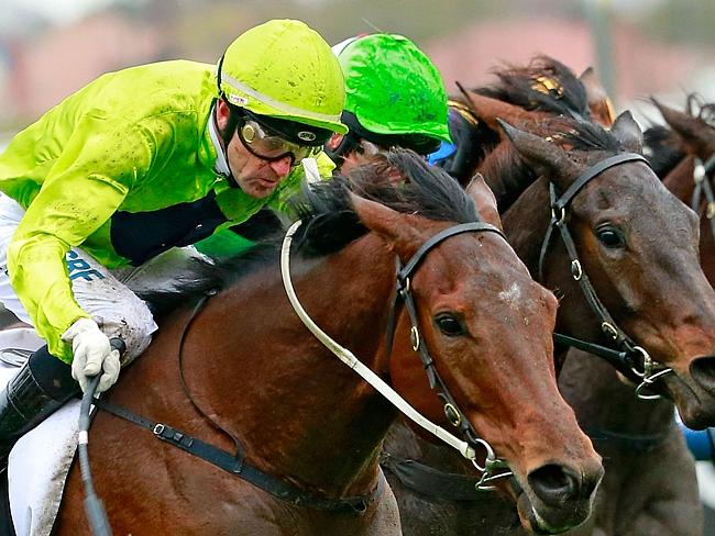 Dwayne Dunn guides Pilly's Wish to victory at Caulfield. Picture: Getty Images