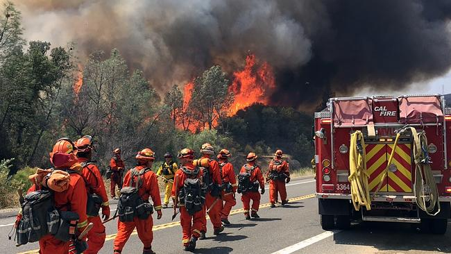 Fire crews fight a raging Northern California wildfire earlier this month. (AP Photo/Terr