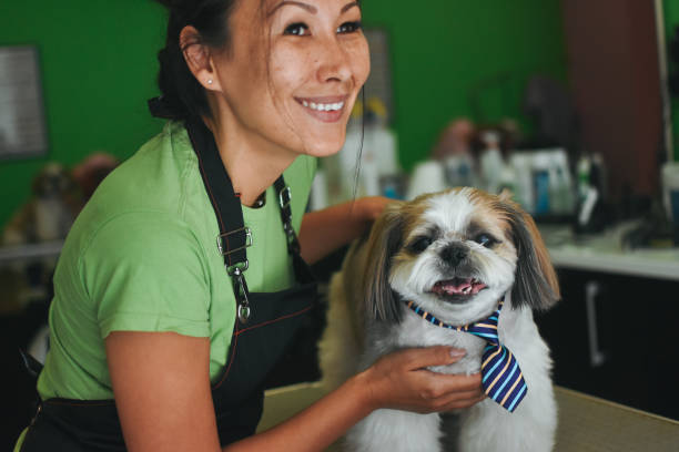 groomer for pets