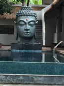 Find serentiy in Bali come train with the Resourc Therapy Institute