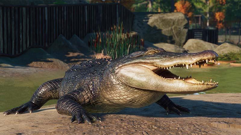 Planet Zoo North America Animal Pack Alligator