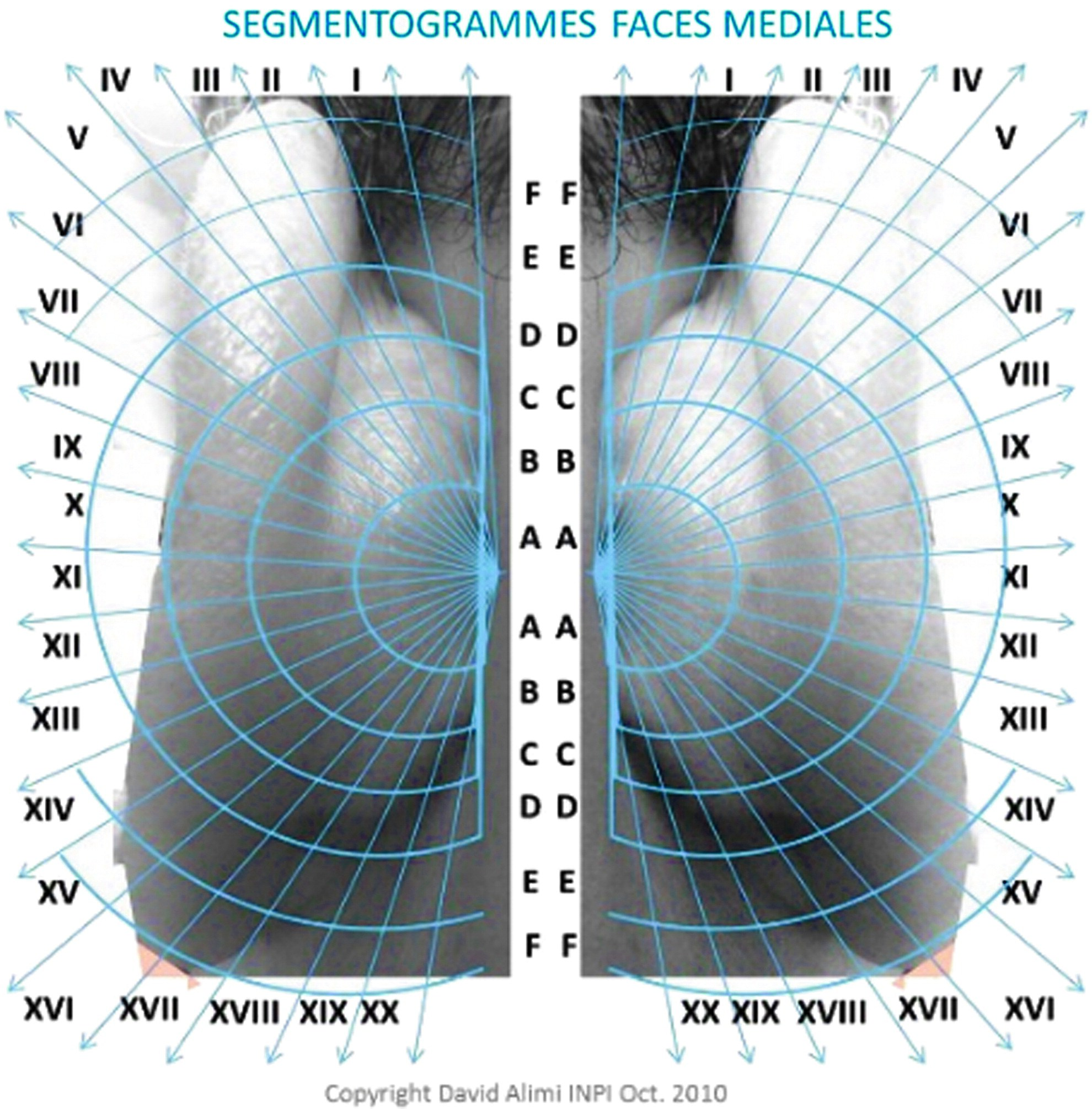 A new nomenclature for auricular acupuncture: The ultimate in Tooth ...