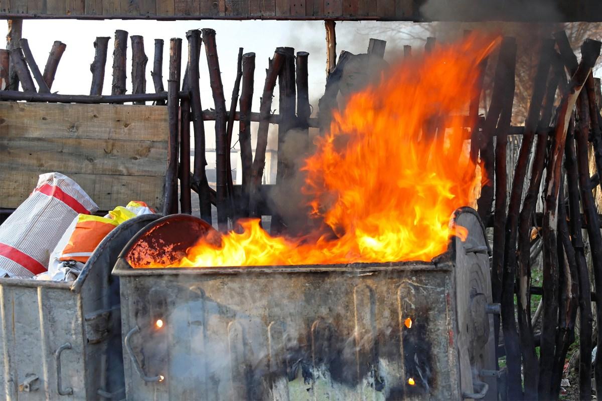 Gayle Delong's dumpster fire
