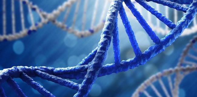 LifeDNA