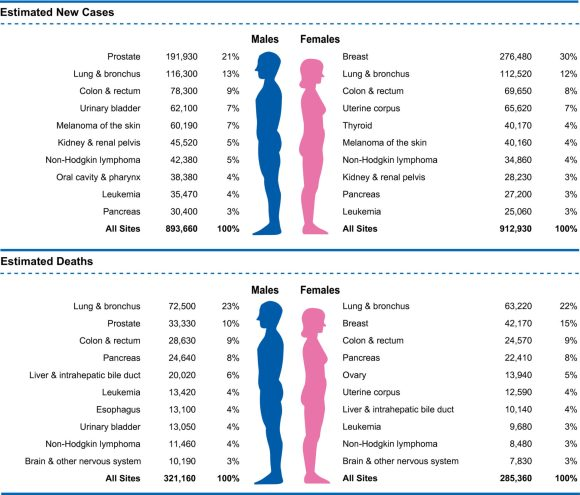 Estimated new cancer cases