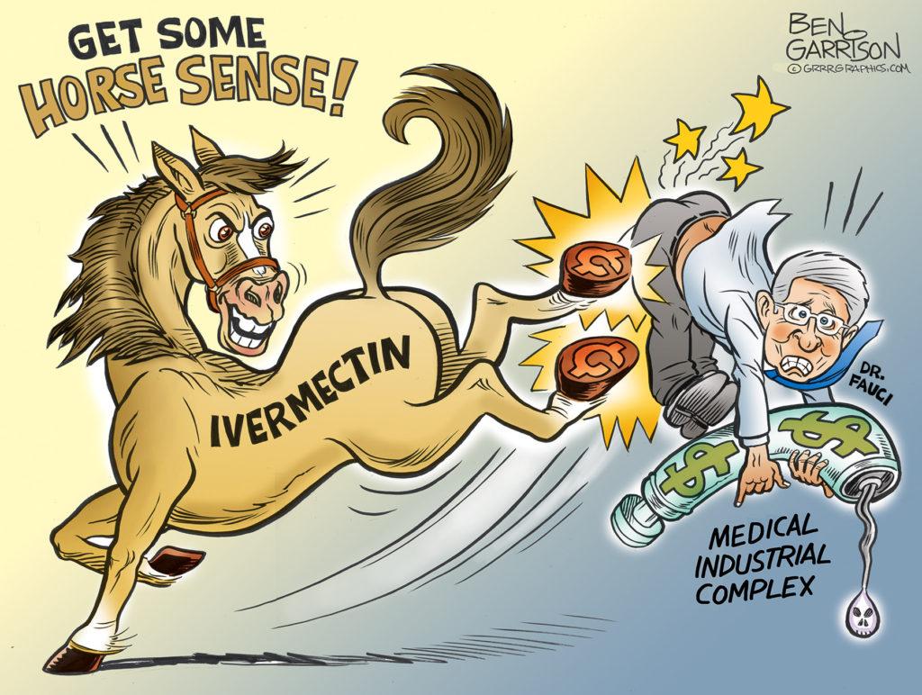 An example of a Ben Garrison ivermectin cartoons