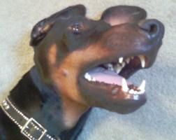 Darwin, my what big teeth you have!