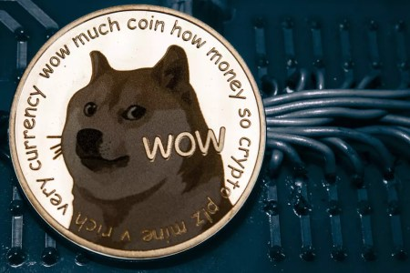 Dogecoin Price Prediction For 2021