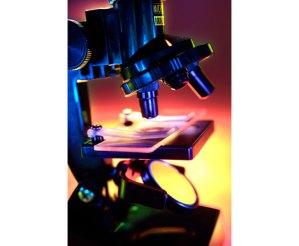 microscope-to-find-foodborne-illness