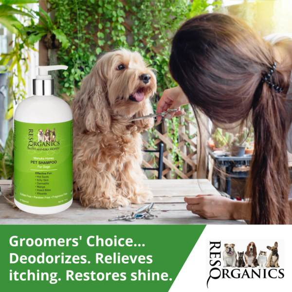 Shampoo for Dogs with Sensitive Skin