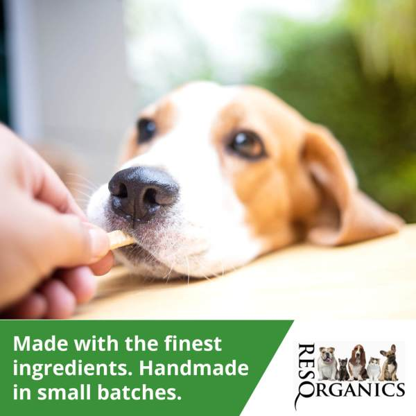 Pet Approved Delicious Natural Diabetic Dog Treats