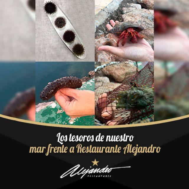 Restaurante Alejandro Estrella Michelin Almería