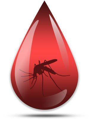 Malaria 101