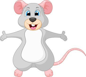 What To Do If There Are Mice or Rats In Your House