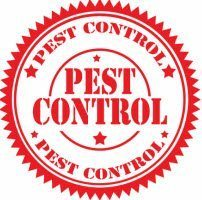 Roach or Rodent Infestations in your Restaurant or Business? Hire a Commercial Pest Control Company!