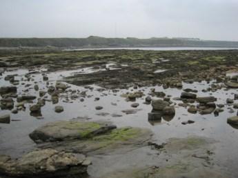Creating lots of rock pools