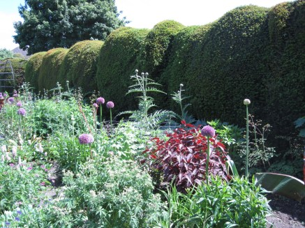 The borders were crammed full of planting