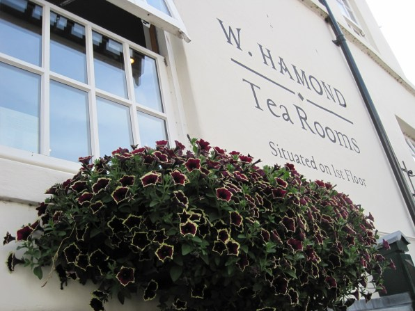 Looking up- doesn't the window box look good?