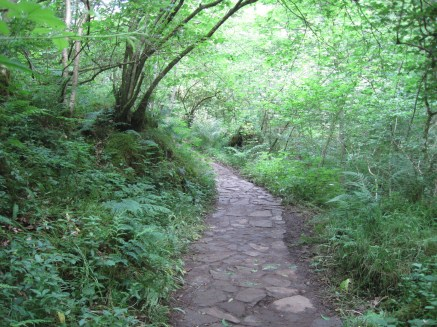 Before the path leads on
