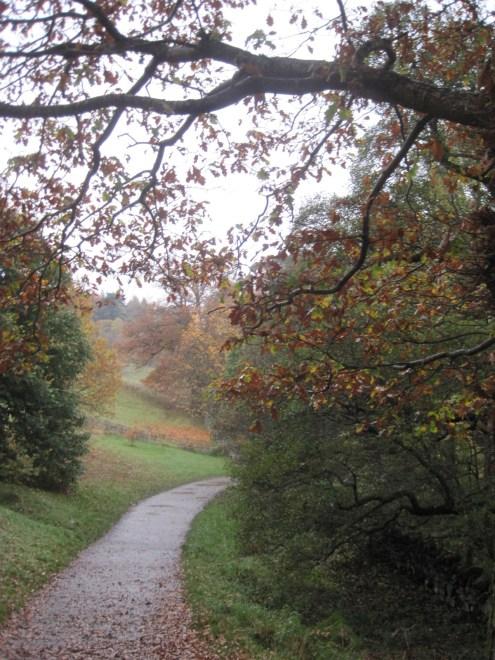 Heading towards the Pinetum