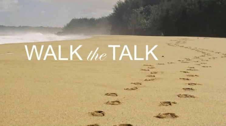 Image result for walk the talk
