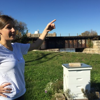 "<span class=""entry-title-primary"">The Healing Power of Beehives</span> <span class=""entry-subtitle"">Jeannine Wise, Chef and Beekeeper, Explains</span>"