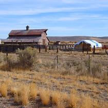 Burns-Barn