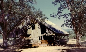 4_Image_Smith-barn-in-1970-edited