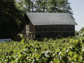 Shipley-Cook Barn (photo: Drew Nasto)