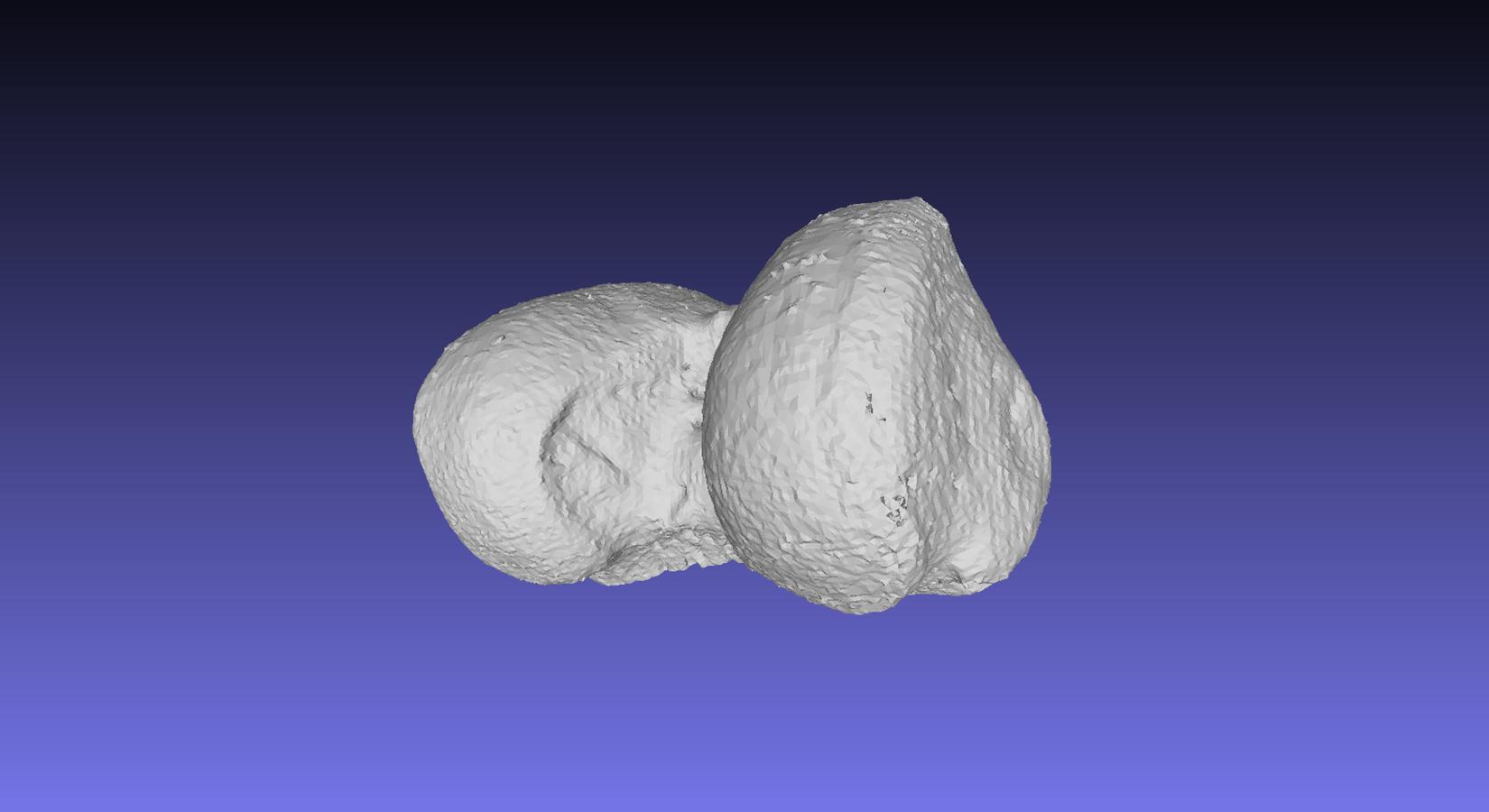 Femur 3D model