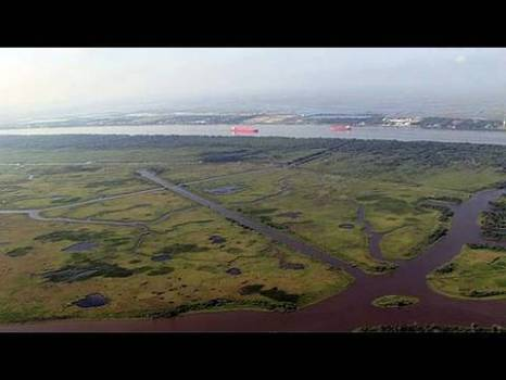 The Untold Story - Louisiana Wetlands Loss