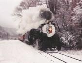 Snow White 1702